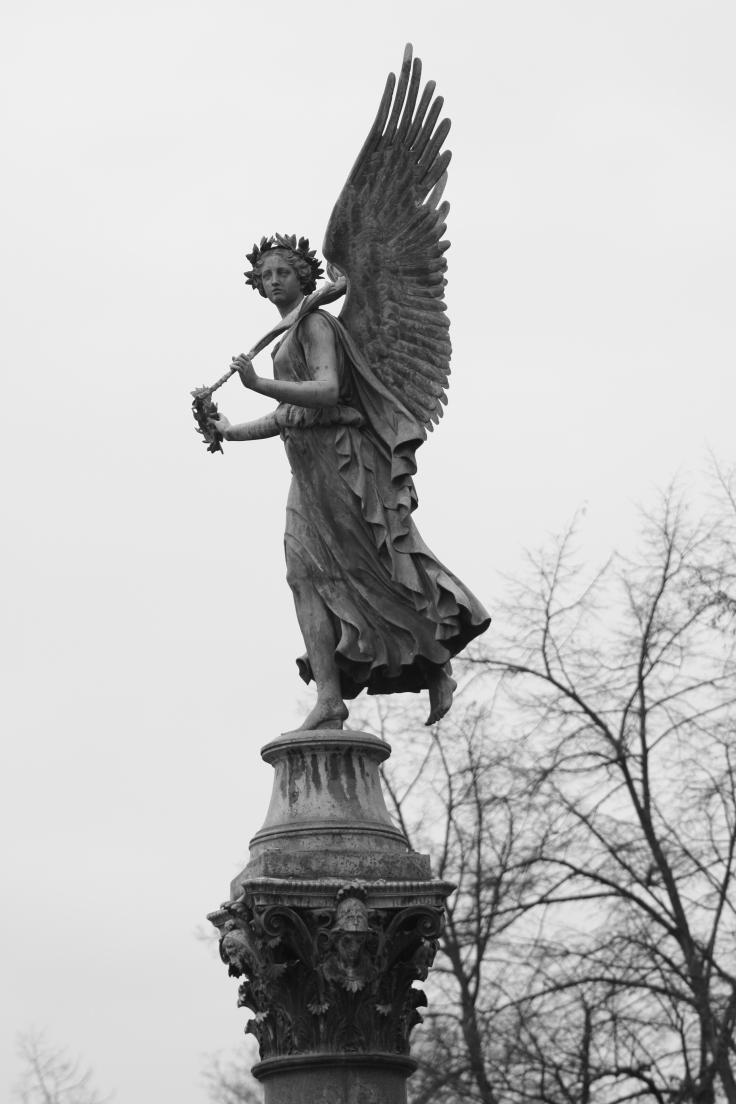 despliega tus alas