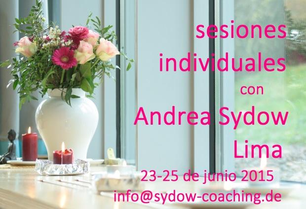 sesiones individuales lima 23 25 junio 15