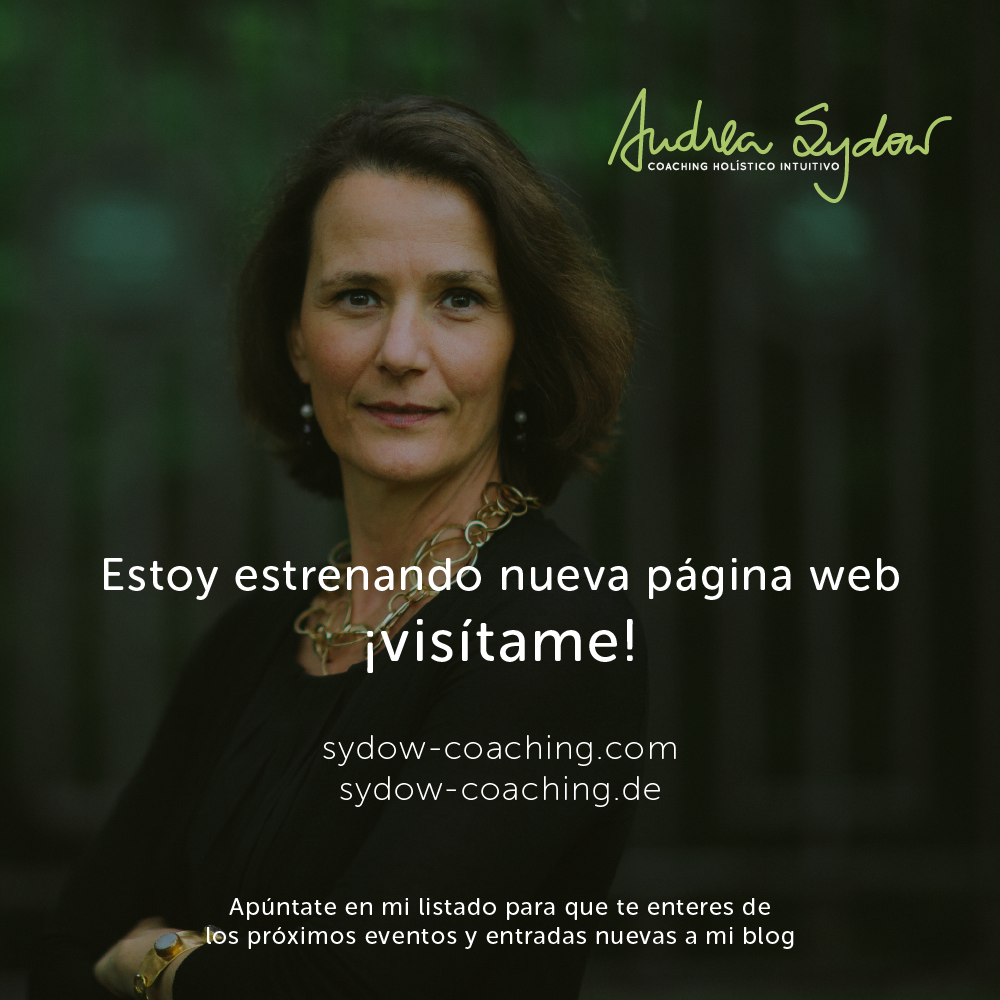 Coaching in Berlin, Spain, Latinamerica